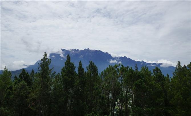 キナバル山の画像 p1_15